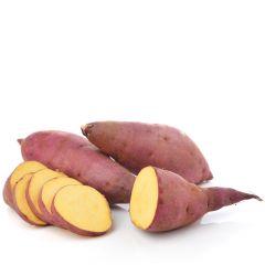Sweet Potato Usa