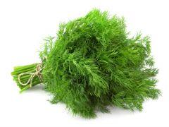 Dill Herbs Bunch 75G |?sultan-center.com????? ????? ???????