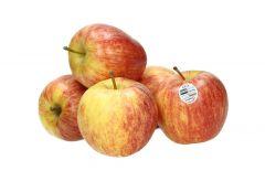Gala Apple Xf Chile Per Kg |sultan-center.comمركز سلطان اونلاين