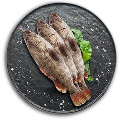 Hamoor Fish Iran