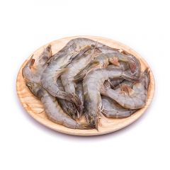 Chilled Small Shrimps Iran