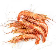 Jumbo Shrimps Iran