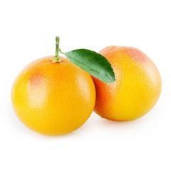 Grapefruit Lebanon