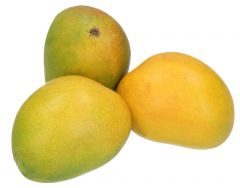 Mango Alphanso Indian Per kg |?sultan-center.com????? ????? ???????