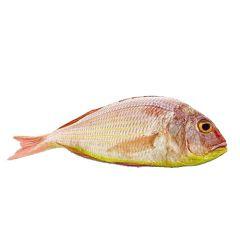Sultan Ibrahim Whole Fish Kuwait