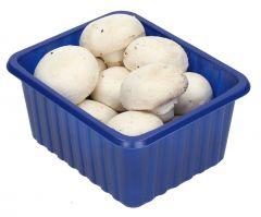Mushroom Fine/Small pack |sultan-center.comمركز سلطان اونلاين
