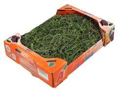 Lama Green Thyme small box |?sultan-center.com????? ????? ???????