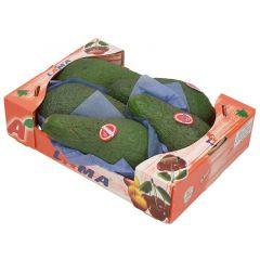 Lama Avocado In Box