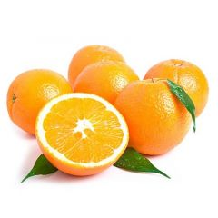 Orange Navel Lebanon Per Kg | sultan-center.com مركز سلطان اونلاين