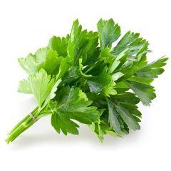 GFC Herbs Coriander Saudi
