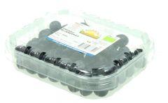 NatureLand Organic Blueberries