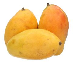 Timoor Mango Yeman kg |?sultan-center.com????? ????? ???????