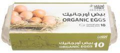 Only Organic Eggs Tray 10pcs |?sultan-center.com????? ????? ???????