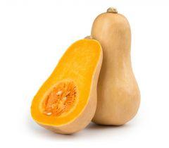 Butternut Squash Pumpkin Holland