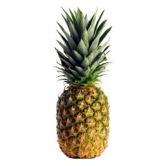 Gold Pineapple Africa
