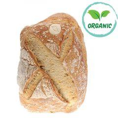 Sourdough Pave Organic Bread